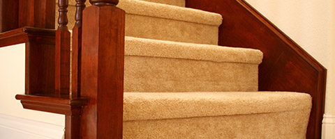 Perfect Solution Carpet Cleaning : Contact Us